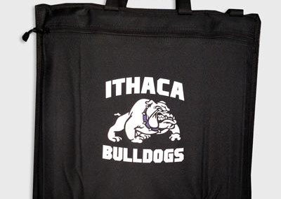 ithaca stadium chair
