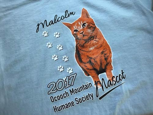 Custom-Kitten-Cat-Screen-print-shirt